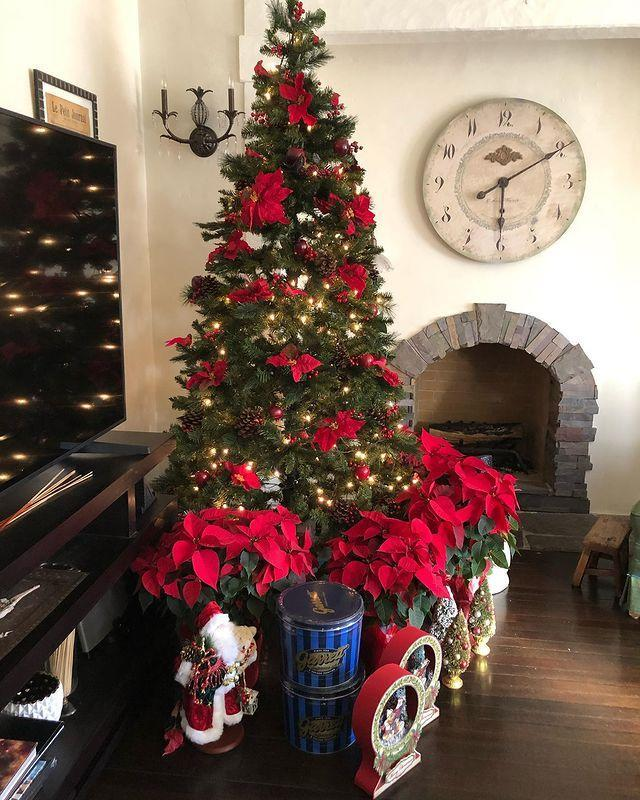 "<p>The Witches and Hidden Figure actress knows that the best inspiration can be found found in nature and opted to accent her tree with pretty and super traditional poinsettias and pinecones. </p><p><a href=""https://www.instagram.com/p/CIkb_2HA3iW/?igshid=18j68pyhtkm3s"" rel=""nofollow noopener"" target=""_blank"" data-ylk=""slk:See the original post on Instagram"" class=""link rapid-noclick-resp"">See the original post on Instagram</a></p>"
