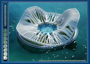 New biotechnological prototype of ecologic resilience dedicated to the nomadism and the urban ecology in the sea, Lilypad travels on the water line of the oceans, from the equator to the poles following the marine streams warm ascending of the Gulf Stream or cold descending of the Labrador.