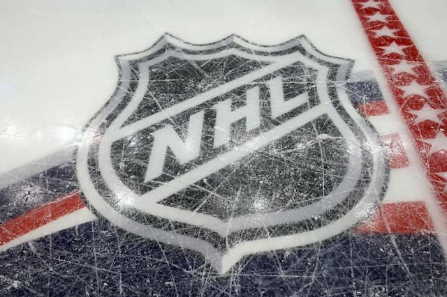 The NHL and NHL Players' Association unveil plans for an eight-team World Cup of Hockey in 2016 to feature more than 150 of the league's best players (AFP Photo/Bruce Bennett)