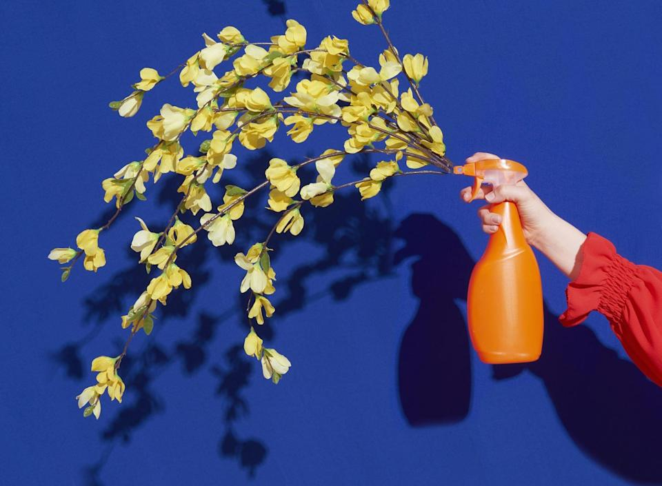Sustainable-cleaning-products