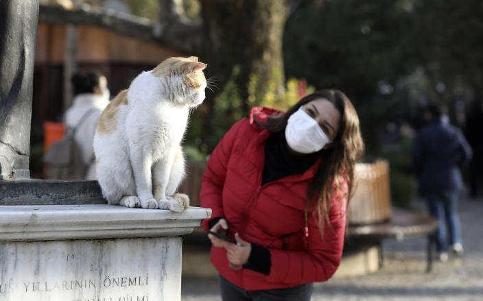 A woman wearing a mask to help protect against the spread of coronavirus, tries to communicate with Efe, a cat living in Kugulu public garden, in Ankara, Turkey, Monday, Nov. 30, 2020.Turkey's President Recep Tayyip Erdogan has announced Monday the most widespread lockdown so far amid a surge in COVID-19 infections, extending curfews to weeknights and full lockdowns over weekends.(AP Photo/Burhan Ozbilici)