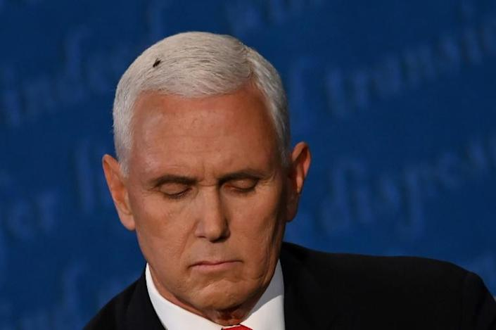 A fly rests on the head of US Vice President Mike Pence during the vice presidential debate