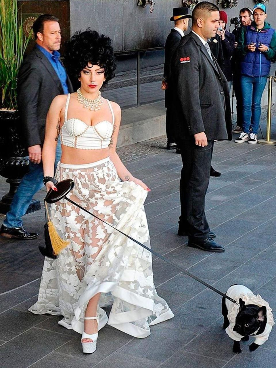 <p>Lady Gaga and dog Asia out and about in Sweden.</p>