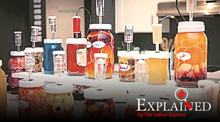 Fermentation, fermentation meaning, what is fermentation, Express Explained, Indian Express
