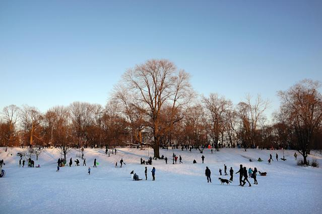 NEW YORK, NY - FEBRUARY 09: People walk and sled through a snowy Prospect Park in Brooklyn the morning after a massive snow storm on February 9, 2013 in New York City. New Yorkers woke up to over 10 inches of snow Saturday morning while parts of New England received over thirty inches following a storm that brought high winds and blizzard like conditions to the region. (Photo by Spencer Platt/Getty Images)