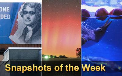 Snapshots - This weekly collection includes eye-catching images from around the world ...