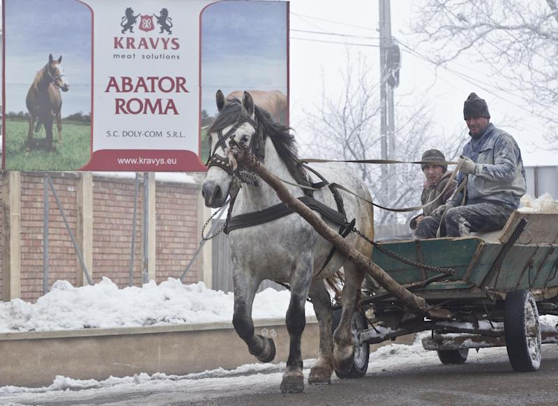 CORRECTS LOCATION In this Feb. 12, 2013  men ride on a horse pulled cart passing by the Doly Com abattoir, in Roma, Romania,  one of the two Romanian plants suspected in the recent European horse meat scandal . Europe's horsemeat scandal has focused the spotlight on Romania and its network of 35 plants authorized to butcher horses. France says Romanian butchers were part of a supply chain that resulted in horsemeat being labeled as beef in frozen meals across Europe. The Romanians have bristled and say the meat was properly declared when it left the country.  (AP Photo/Vadim Ghirda, File)