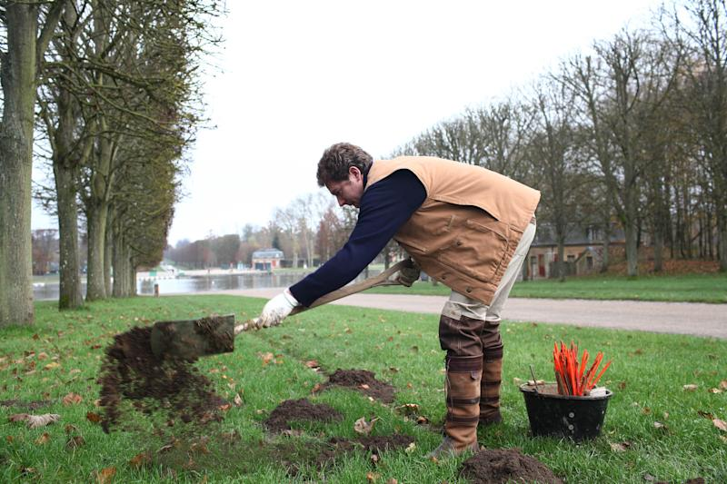 """Molecatcher Jerome Dormion uses a shovel in the park of the Chateau de Versailles, west of Paris, Thursday, Nov. 22, 2012. The king is dead, but the molecatcher lives on. He even signs SMS messages: """"Molecatcher to the king."""" It's been over two centuries since Louis XVI was guillotined on Paris' Place de la Concorde, but the job of hunting the underground rodent that so troubled French monarchs on the grounds of the Versailles palace still exists. (AP Photo/Thibault Camus)"""