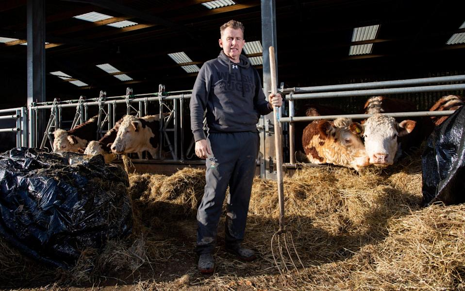 Nigel Owens has made the transition to the world of cattle farming over the last couple of years - TOM WREN