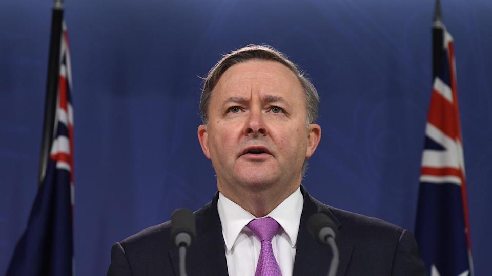 Labor Anthony Albanese says Australia's in the grip of a national domestic violence crisis.