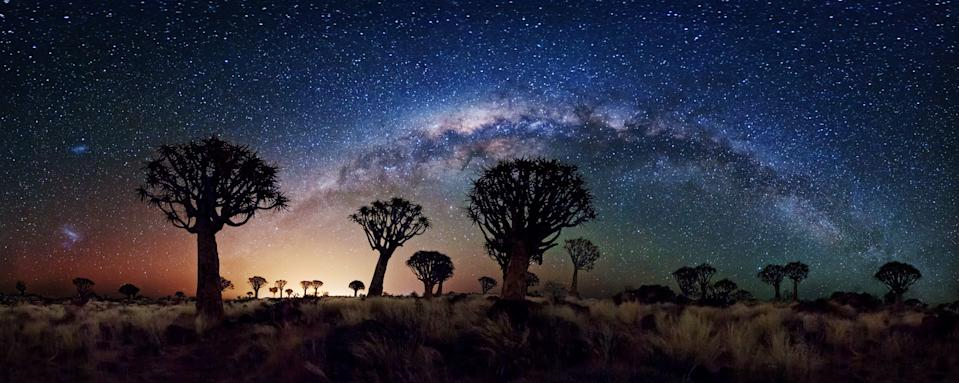 """The southern winter sky shows off its best in this 240 degree view of the Milky Way behind the Quiver Tree Forest near Keetmanshoop, Namibia. Both Magellanic clouds are visible on the left, while the central bulge of our own galaxy contrasts with the warm glow of light pollution from the nearby town. (Florian Breuer, South Africa, Shortlist, Panoramic, Open Competition 2013 Sony World Photography Awards) <br> <br> <a href=""""http://worldphoto.org/about-the-sony-world-photography-awards/"""" rel=""""nofollow noopener"""" target=""""_blank"""" data-ylk=""""slk:Click here to see the full shortlist at World Photography Organisation"""" class=""""link rapid-noclick-resp"""">Click here to see the full shortlist at World Photography Organisation</a>"""