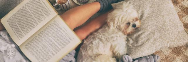 Woman lying on bed with dog reading a book.