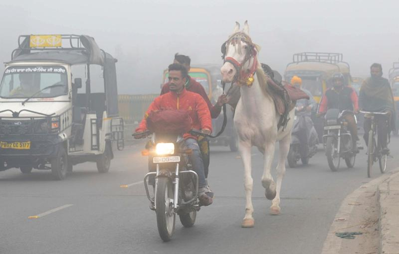Indian commuters lead a horse through thick smog in Amritsar