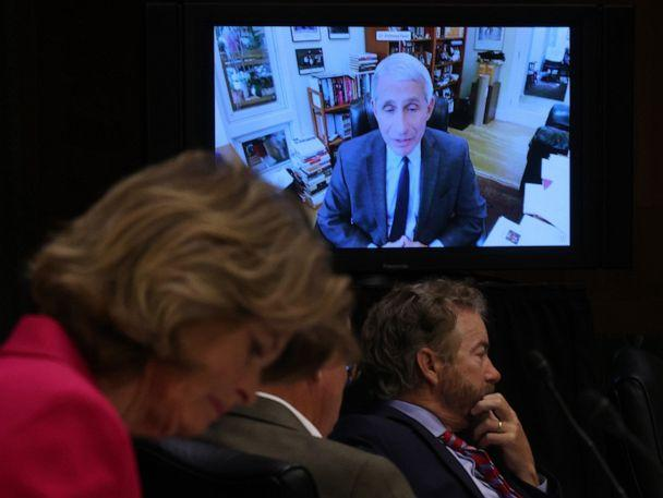 PHOTO: Senators listen to Dr. Anthony Fauci, director of the National Institute of Allergy and Infectious Diseases speak remotely during a Senate Health, Education, Labor and Pensions Committee hearing on Capitol Hill on May 12, 2020, in Washington, DC. (Win Mcnamee/Getty Images)