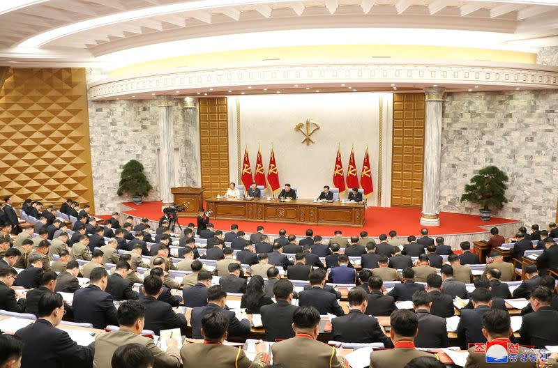 Plenary meeting of the Workers' Party central committee in Pyongyang