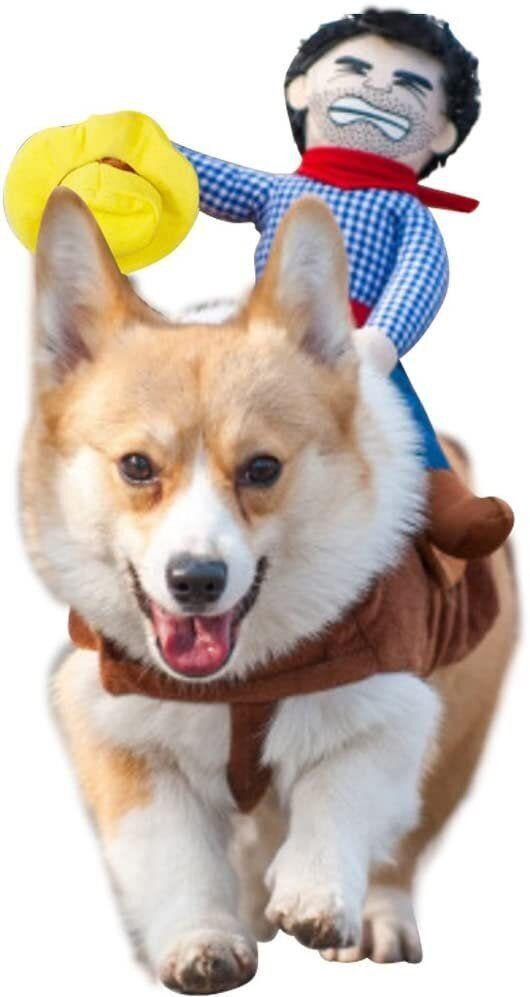 "Get this <a href=""https://amzn.to/343wiCm"" target=""_blank"" rel=""noopener noreferrer"">NACOCO Cowboy Rider Dog Costume for $13</a> (normally $25) at Amazon. It's available in sizes XS-L and has an adjustable strap."