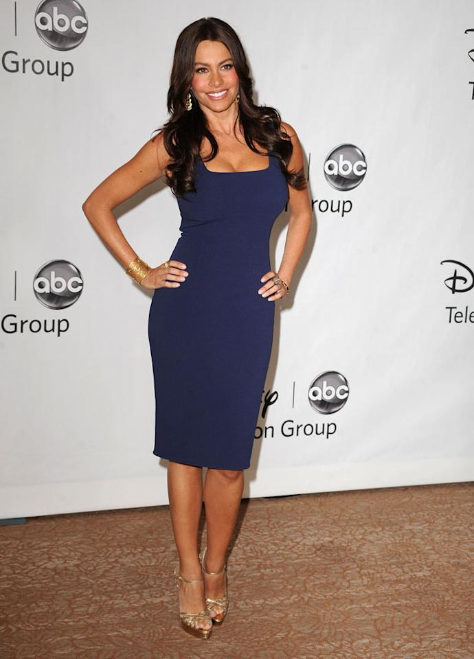 """""""Modern Family's"""" Sofia Vergara arrives at NBC Universal's 2010 TCA Summer Party on July 30, 2010 in Beverly Hills, California."""