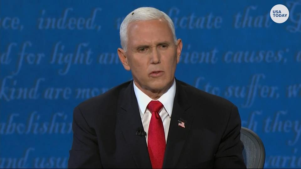 A fly that landed on Vice President Mike Pence's head during the vice presidential debate has become an internet star.