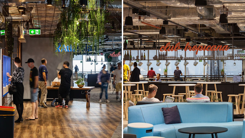 Pictured: Workers at tech giant Atlassian's Sydney office. Images: Supplied
