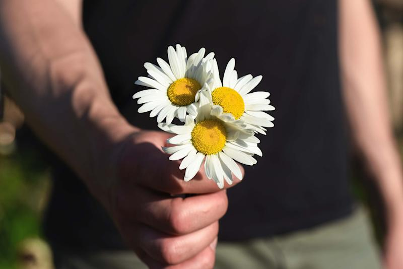 a close up of a man holding three daisies in his hand