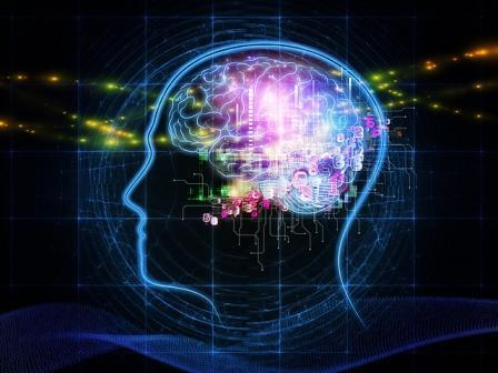 Challenges in Simulating a Human Brain
