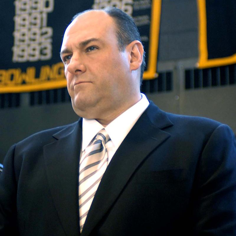 Emmy and Golden Globe winning actor James Gandolfini, a Westwood native raised in Park Ridge, was best known for his role as Tony Soprano in HBO's The Sopranos. The Rutgers graduate was inducted into the New Jersey Hall of Fame in 2014.