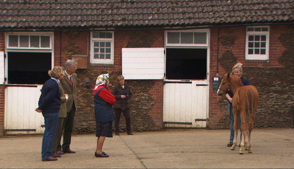 Queen Elizabeth II inspects a newborn foal at Sandringham Stud. (BBC/PA Images)
