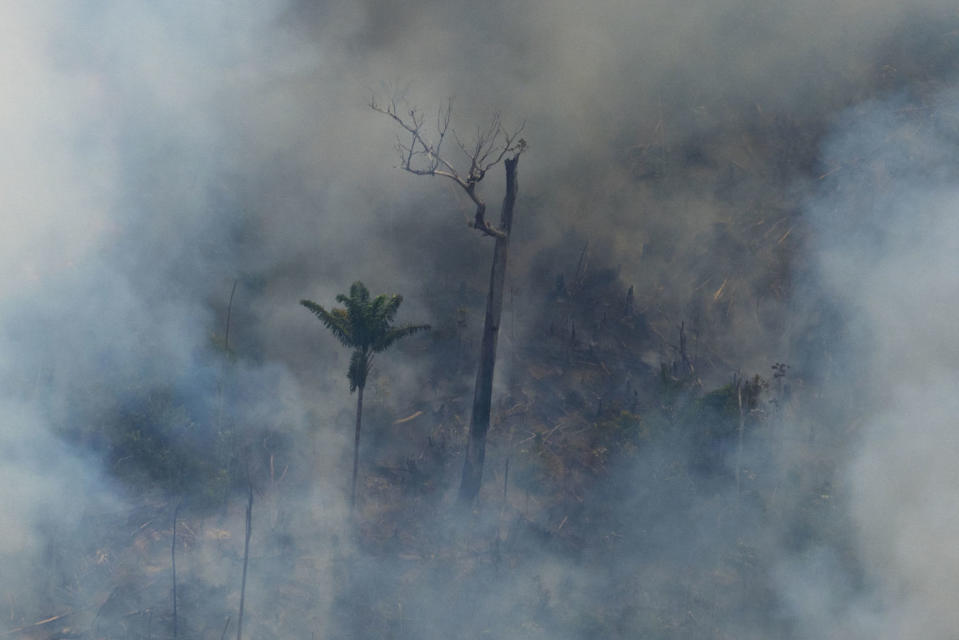 Fire consumes an area near Porto Velho in Brazil on Friday (Picture: AP)