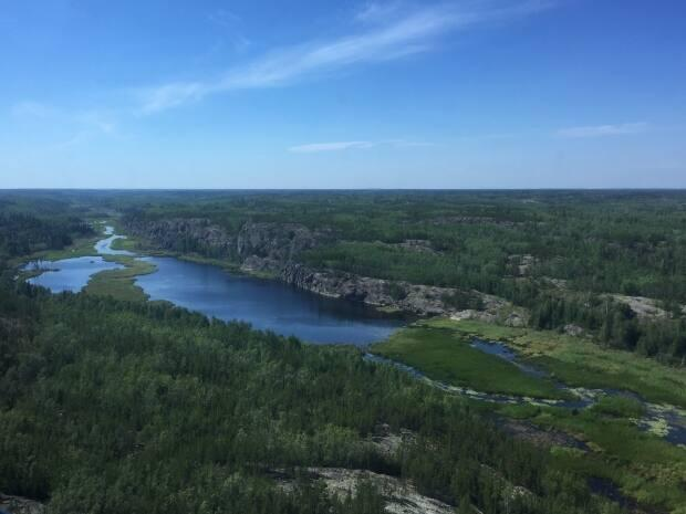 A patch of boreal forest northeast of Fort Smith, N.W.T. as seen from a helicopter. Lodges that operate in remote regions of the territory can apply to receive tourists from out of territory under new pandemic guidelines introduced this week.  The Office of the Chief Public Health Officer has also stated that it will consider allowing residents who travelled outside of N.W.T. to isolate at remote cabins or remote locations. (Jimmy Thomson/CBC - image credit)