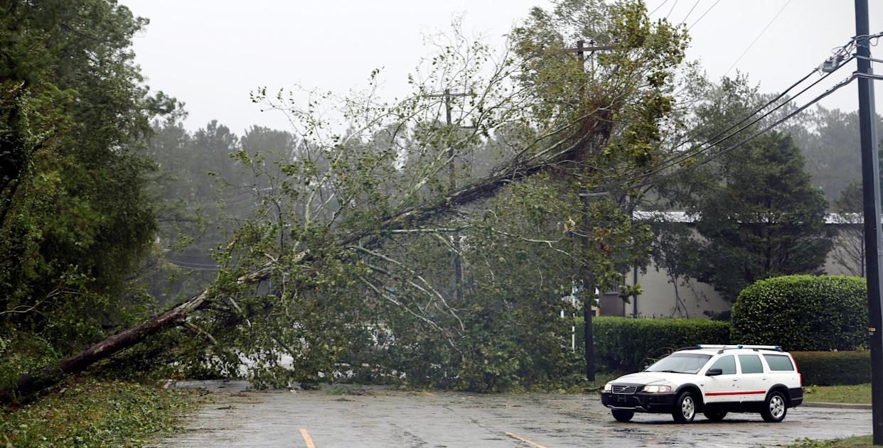 A motorist navigates away from a fallen tree blocking a road after the arrival of Hurricane Florence in Wilmington, North Carolina on Friday.