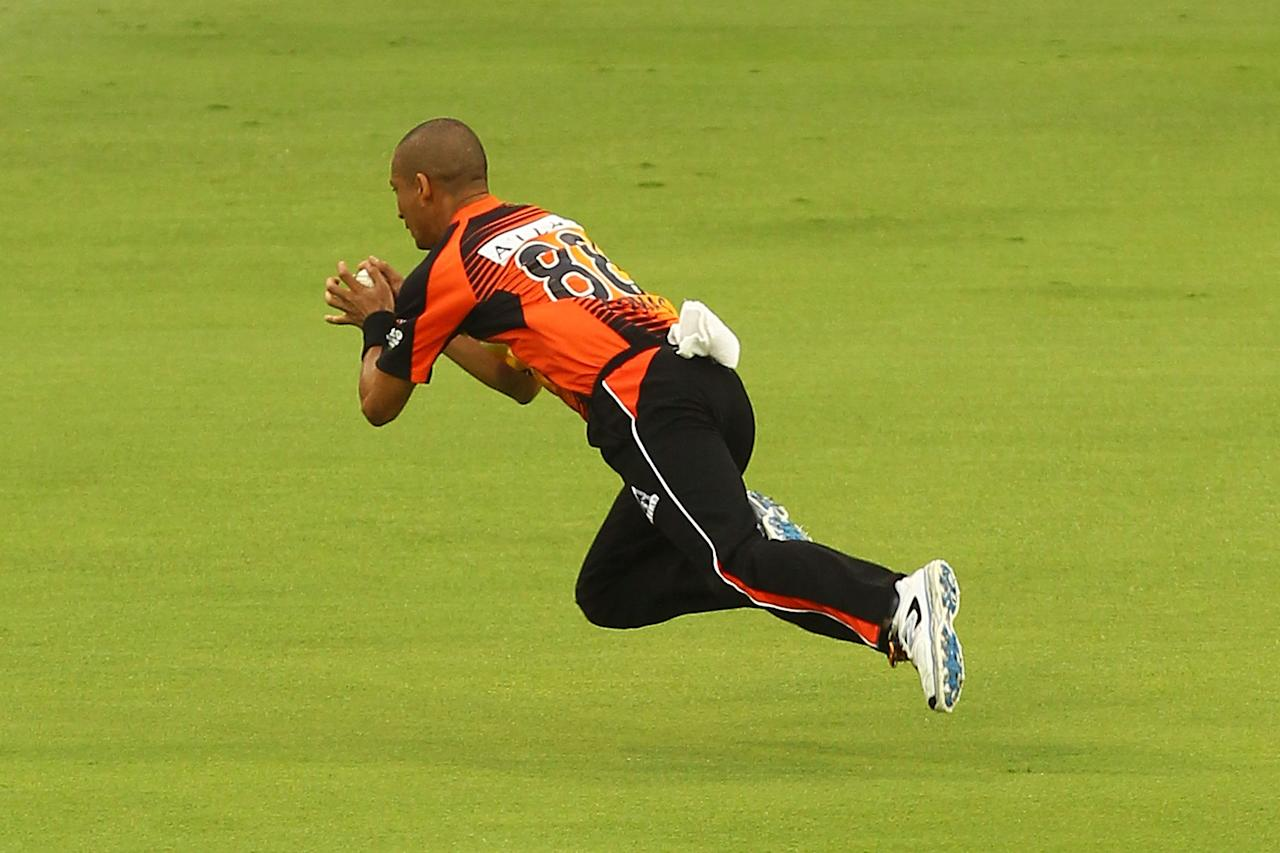 PERTH, AUSTRALIA - JANUARY 16:  Alfonso Thomas of the Scorchers takes a catch off Luke Wright during the Big Bash League semi-final match between the Perth Scorchers and the Melbourne Stars at the WACA on January 16, 2013 in Perth, Australia.  (Photo by Will Russell/Getty Images)