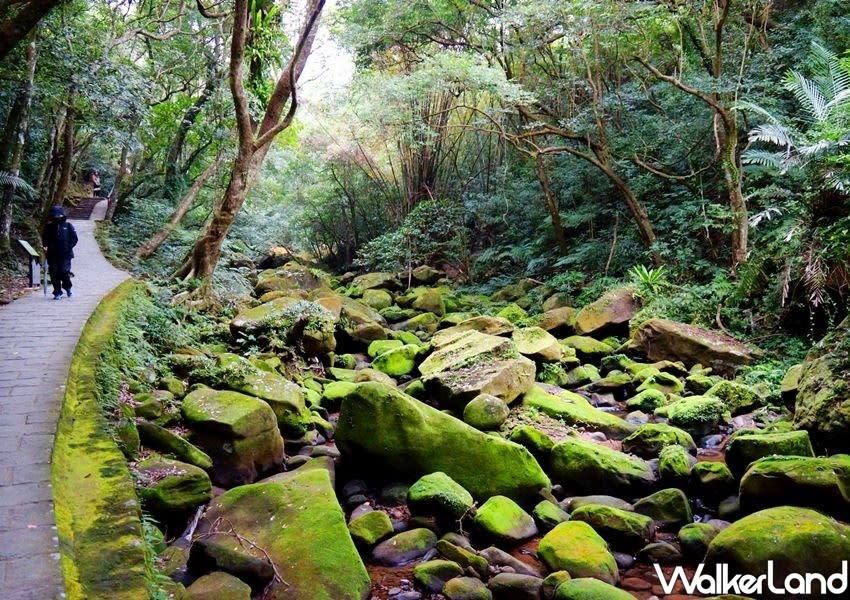 """It is also connected to the surrounding """"Five Finger Mountain Hiking Trail"""", which can take you to Fengbishan Yuanjue Temple, Bishanyan, Baishihu and Carp Mountain, in just a few minutes. (Photo courtesy of Taipei Walker)"""