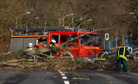 Firefighters work by a fallen tree during stormy weather in Hanau