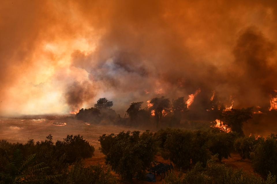 ADANA, TURKEY - AUGUST 02: Smoke and flames rise as the fight against the fire continues in Adana, Turkey on August 02, 2021. It was stated that the fire started in the field and spread to the forest area. (Photo by Ozan Efeoglu/Anadolu Agency via Getty Images)