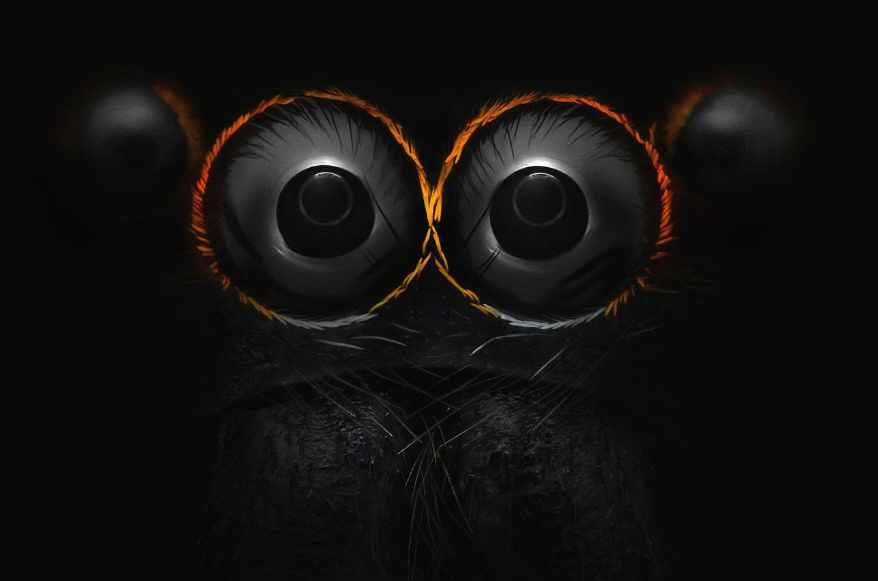 <p>Yousef Al Habshi Abu Dhabi, United Arab Emirates Eyes of a jumping spider (Hasarius adansoni) Reflected Light 9x</p>