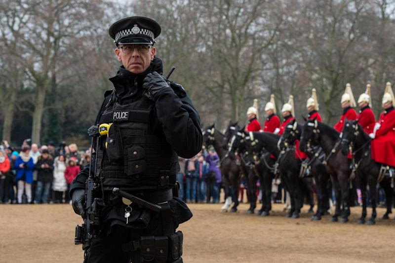 An armed police escort is being deployed to protect the Queen's Household Cavalry during ceremonial duties (file photo): Getty Images