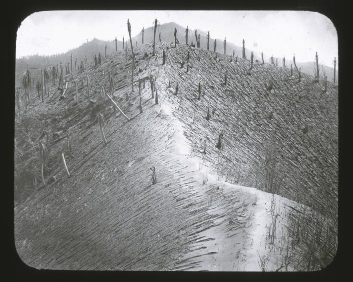 In this 1902 photo provided by York Museums Trust, the seared landscape is seen following the eruptions of La Soufrière, a volcano on the island of St. Vincent in the Caribbean. The 1902 catastrophe is a reminder that St. Vincent recovered from massive eruptions in the past. (Tempest Anderson/York Museums Trust via AP)