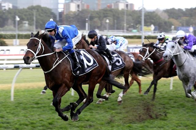 Jockey Hugh Bowman will ride record-breaking mare Winx in her final race on Saturday. (AFP Photo/Bob Barker)