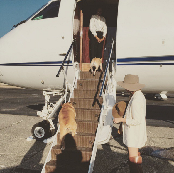 "<p>Not to be outdone, Chrissy Teigen's <i>dogs</i> travel better than you ever will. <i>(Photo: <a rel=""nofollow"" href=""https://www.instagram.com/p/3q-JvHJjQp/"">Instagram</a>)</i></p>"