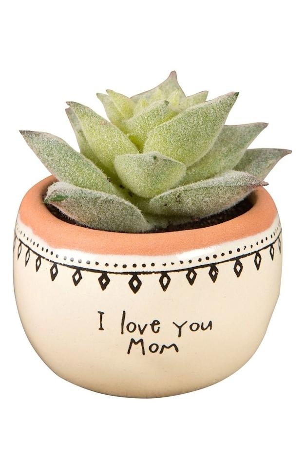 """<p>Plant fiends will swoon over this thoughtful succulent.</p><p><em>Natural Life I Love You Mom Mini Potted Succulent, $12. <a rel=""""nofollow"""" href=""""http://shop.nordstrom.com/s/natural-life-i-love-you-mom-mini-potted-succulent/4591886?fashioncolor=GREEN&mbid=synd_yahooentertainment&origin=category-personalizedsort"""">nordstrom.com</a></em></p>"""