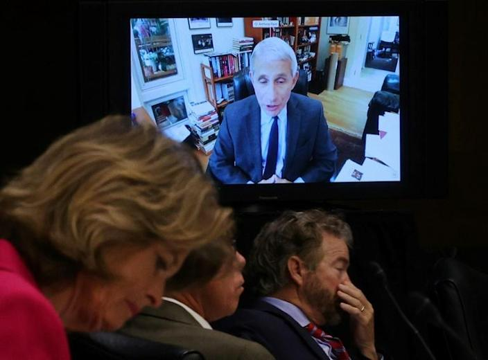 Senators listen to Anthony Fauci address a hearing of the Health, Education, Labor and Pensions Committee (AFP Photo/WIN MCNAMEE)