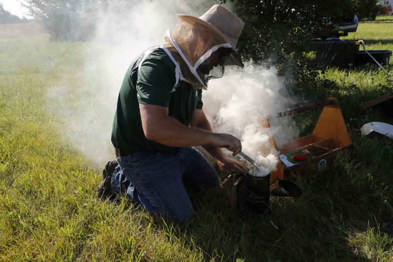 "In July 11, 2019 photo, Adam Ingrao, an agricultural entomologist and military veteran who runs the Heroes to Hives program, prepares a bee smoker at the Henry Ford farm in Superior Township, Mich. Ingrao, a fourth-generation soldier, runs Heroes to Hives through Michigan State University Extension. ""You're not thinking about what happened in Afghanistan or Iraq. You're thinking about what's happening right here, right now."" (AP Photo/Carlos Osorio)"