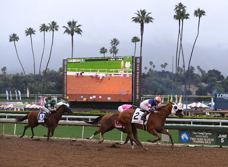 Owners of the Santa Anita racetrack have rejected calls to suspend racing after two more horse fatalities at the course