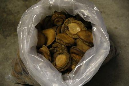 A bag of dried abalone confiscated from suspected poachers is seen in Cape Town