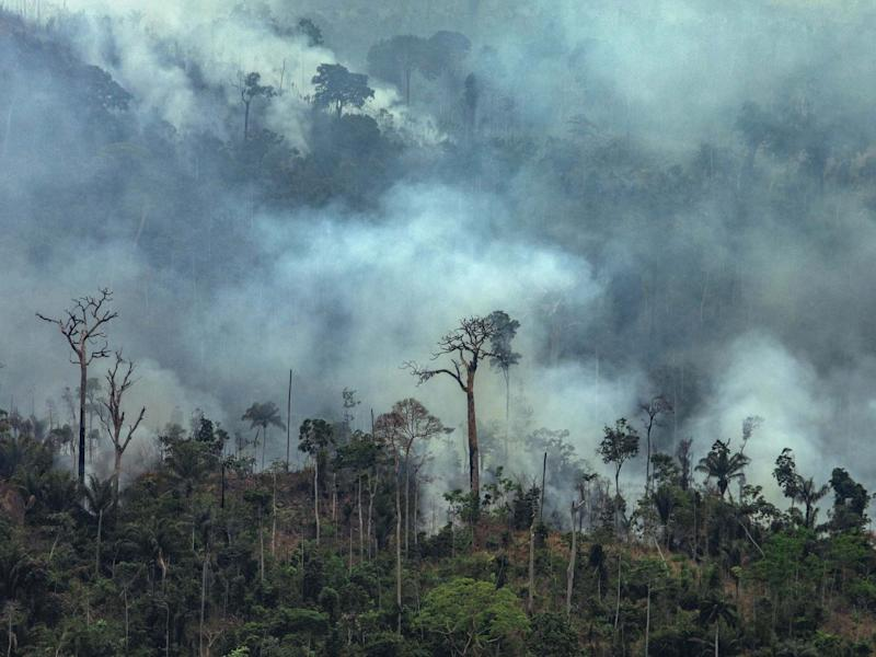 Handout aerial image of smoke billowing from fires in the forest in the Amazon biome in Itaituba, Para State, Brazil, on 23 August 2019: Victor Moriyama/Greenpeace /AFP