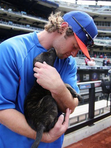 "New York Mets' Kirk Nieuwenhuis cuddles a small dog before a baseball game against the Washington Nationals in New York on Saturday, April 20, 2013. The dog, from the North Shore Animal League, was visiting the game as part of the Mets' ""Bark in the Park"" activities. (AP Photo/Peter Morgan)"