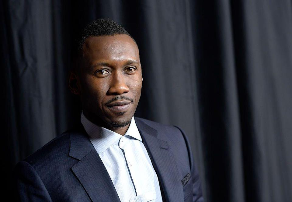 <p>No dates have been announced for these, but in the future, you can expect:</p><p>*Another Deadpool movie <br>*A new Blade movie starring Mahershala Ali<br>*Another take on the Fantastic Four<br>*A Captain America sequel starring Anthony Mackie</p>