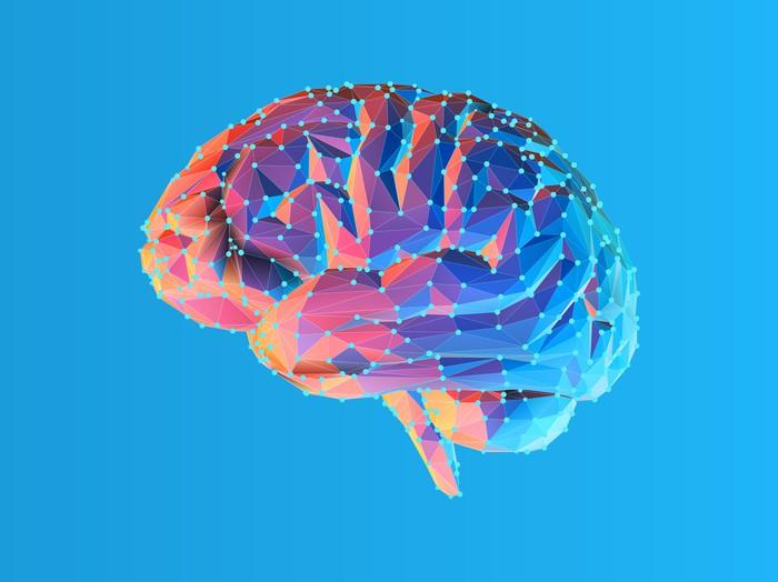 Image of a brain on a bright blue background.