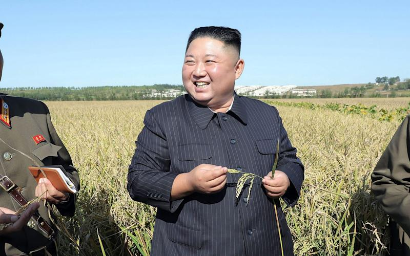 Kim Jong-un inspects an army farm in a photo released by North Korea's state news agencyon Wednesday - AFP