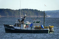 A lobsterman moves traps at the stern of a boat while fishing, Monday, Sept. 21, 2020, off Portland, Maine. The pandemic has posed significant challenges for the state's lobster fishery, which is the nation's largest, but members of the industry reported a steady catch and reasonable prices at the docks. (AP Photo/Robert F. Bukaty)